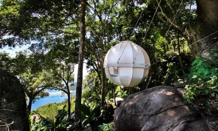 Se sempre sonhou ter uma casa na árvore, conheça esta versão moderna que pode albergar dois adultos e duas crianças.