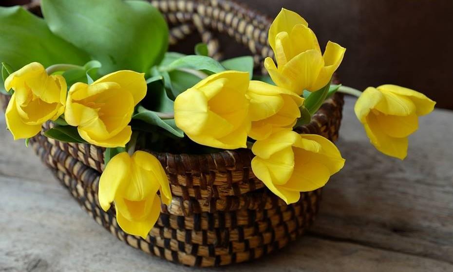 Compre flores: Pela manhã, antes de ir para o escritório, passe no mercado e compre as suas flores preferidas, para colocar na sua secretária. Ao longo do dia vai sorrir de cada vez que olhar para elas.