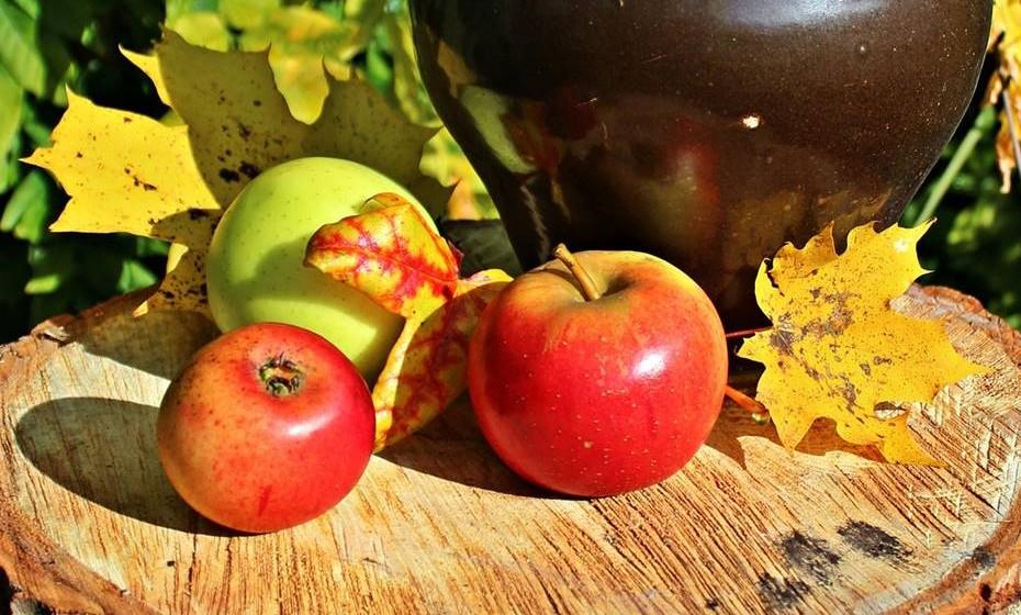 O outono é considerado a grande estação da colheita. Desde a fruta aos legumes, tire partido dos alimentos que a natureza oferece nesta estação. Veja o que não pode faltar na sua mesa.