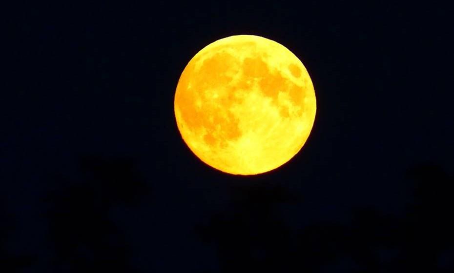 Os cabelos cortados durante a época da lua cheia e crescente crescem mais? Mito.  Não há nenhuma comprovação científica que indique nesse sentido.