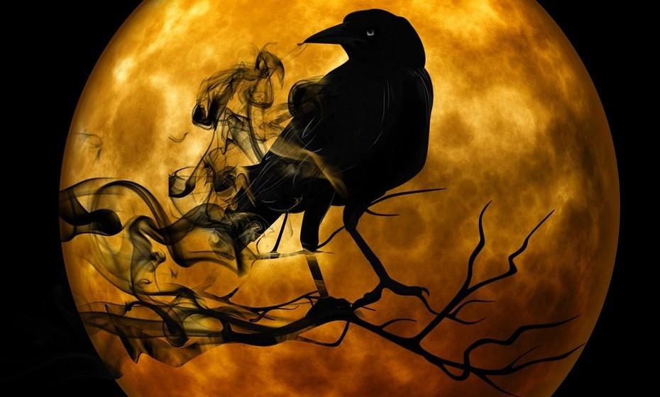 Sintra – Caça às bruxas: Nas noites de 31 de outubro, 1 e 2 novembro, celebra-se o Halloween com a Caça à Bruxa na Serra de Sintra. Perante o misticismo da serra, que decorre de todas a lendas que lhe são atribuídas, o grupo terá que se comportar com bravura e deixar-se envolver pelo esoterismo. Todos os participantes têm que ir mascarados! Local: Sintra Horário: 21h às 00h. Informações: mail@muitaventura.com