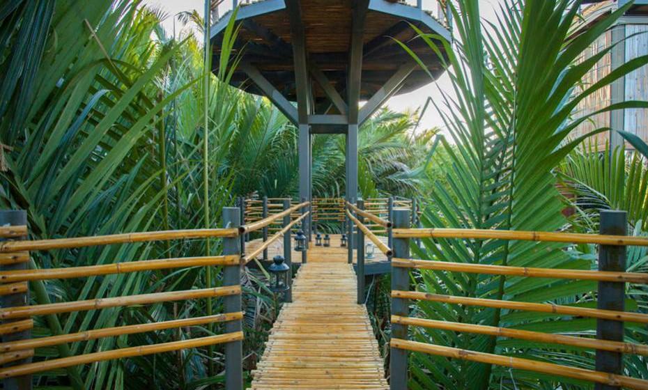 """Na construção foram adotados elementos da natureza, por exemplo os """"ninhos"""" (quartos) são feitos de bambu, vidro e aço. Já os pisos, paredes e tetos são feitos de madeira recuperada e bambu local."""