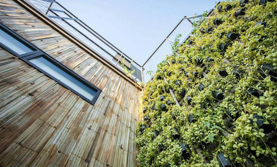 Os resíduos dos alimentos que vêm da cozinha do restaurante são submetidos ao processo de compostagem (decomposição de resíduos domésticos) para posteriormente serem reutilizados como adubo. O resort só utiliza energias renováveis, como é o caso da energia solar e a energia eólica.