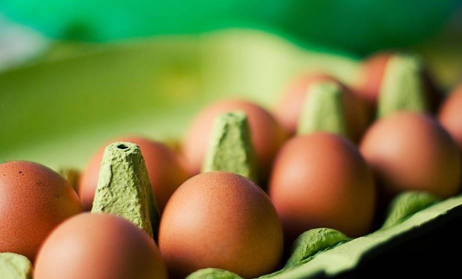 """As prateleiras do meio, que estão a cerca de 5ºC, devem ser usadas para acondicionar os ovos, leite, restos de refeições, bolos e os produtos que mencionam na embalagem """"refrigerar depois de aberto""""."""
