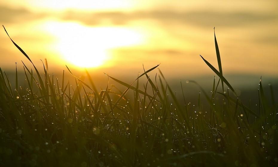 """Acordar cedo: as pessoas de sucesso sabem que o tempo é precioso. Por isso, segundo Laura Vanderkam, 90% dos empresários levanta-se antes das 6 da manhã nos dias de semana. Assim, o pequeno-almoço destas pessoas é """"recheado"""" de telefonemas ou reuniões por forma a chegar ao escritório com muitos dos assuntos do dia já resolvidos."""