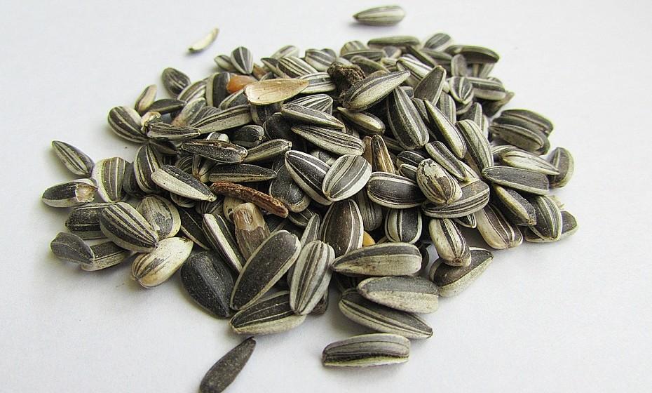 Girassol – Originário da América do Norte, o girassol era bastante utilizado pelos índios na alimentação. Ricas em ácido oleico, as sementes de girassol reduzem o risco de doenças cardiovasculares e de colesterol, funcionando também como fonte de antioxidantes, o que retarda o envelhecimento das células e dos tecidos. Como não têm um sabor muito forte, podem ser consumidas cruas e sem casca, em iogurtes, saladas, refogados e até pratos de arroz.