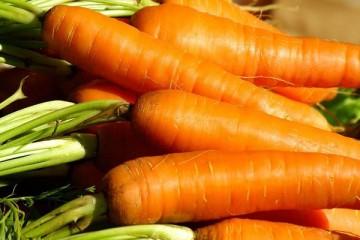 Já conhece os mercados biológicos?