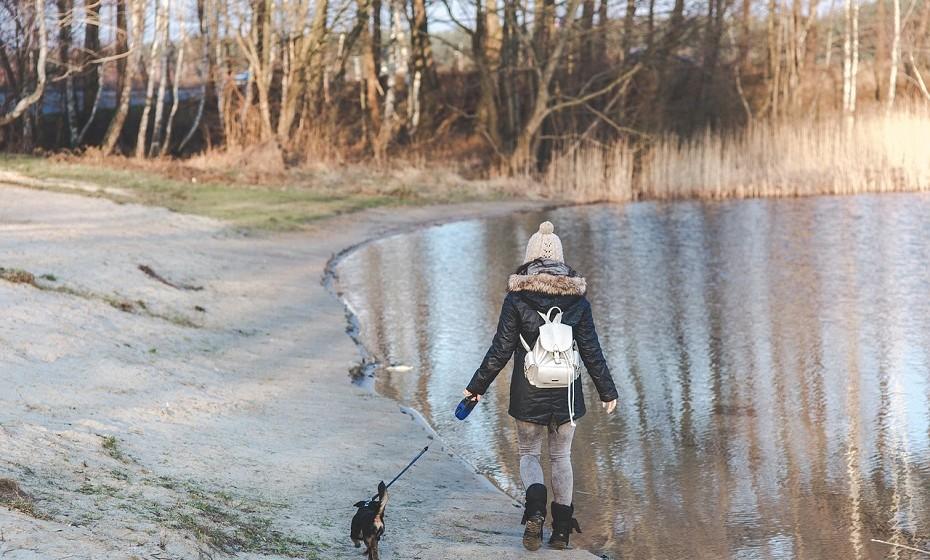 Mesmo que não haja sol e que esteja frio, vá dar um passeio a pé. Deve manter-se o máximo exposta à natureza e à luz. A ausência de luz é um dos grandes fatores que levam à depressão durante esta estação.