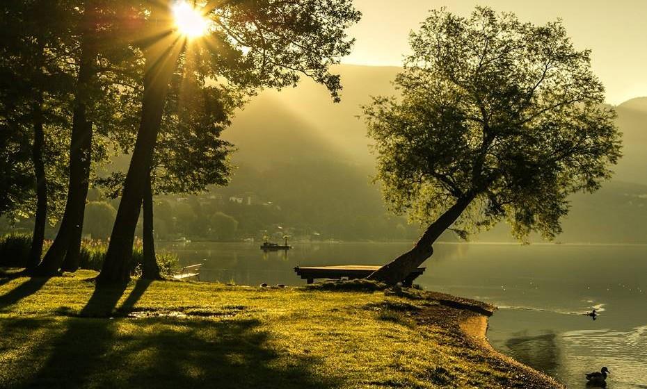 """A praticante e terapeuta holística Helena Lambrou explica: """"Para se encontrar, a pessoa precisa desligar-se dos problemas, colocar os pés na terra, ouvir os sons da natureza, o canto dos pássaros, o vento nas folhas, sentir que ela e a natureza são um. O ideal é encontrar uma árvore com a qual se identifique."""""""