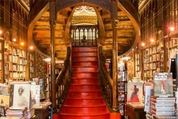 Livraria Lello abre para uma noite de feitiços de Hary Potter