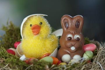 Coelhinhos, ovos, amêndoas... tudo de chocolate. Para que não se sinta muito culpada nesta Páscoa, relembramos que comer chocolate pode ter múltiplos benefícios. Cientificamente comprovados! Mas não é para exagerar, ok? Ora veja.