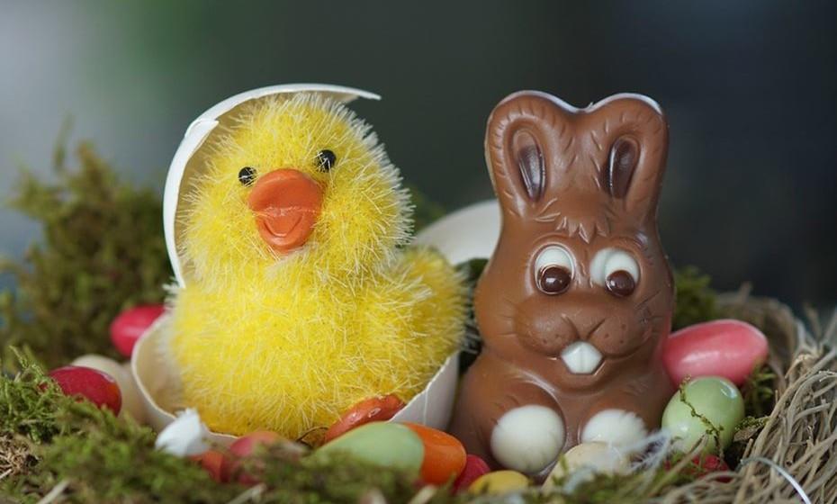 Coelhinhos, ovos, amêndoas... tudo de chocolate. Para que não se sinta muito culpada nesta Páscoa, relembramos que comer chocolate pode ter múltiplos benefícios. Cientificamente comprovados! E sem exageros, claro.