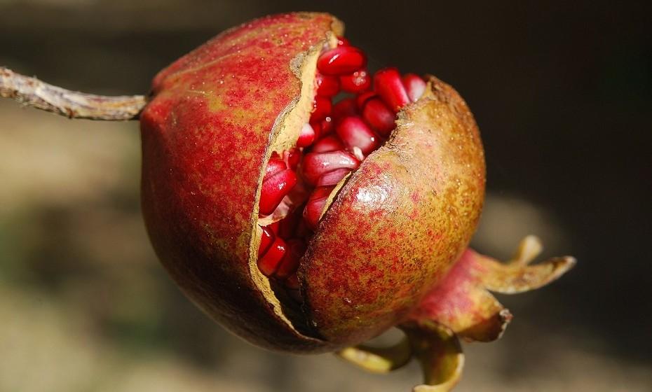 Frutas que podem ajudar a elevar os níveis de estrogénio: Maças, cerejas, ameixas, tâmaras e romãs.