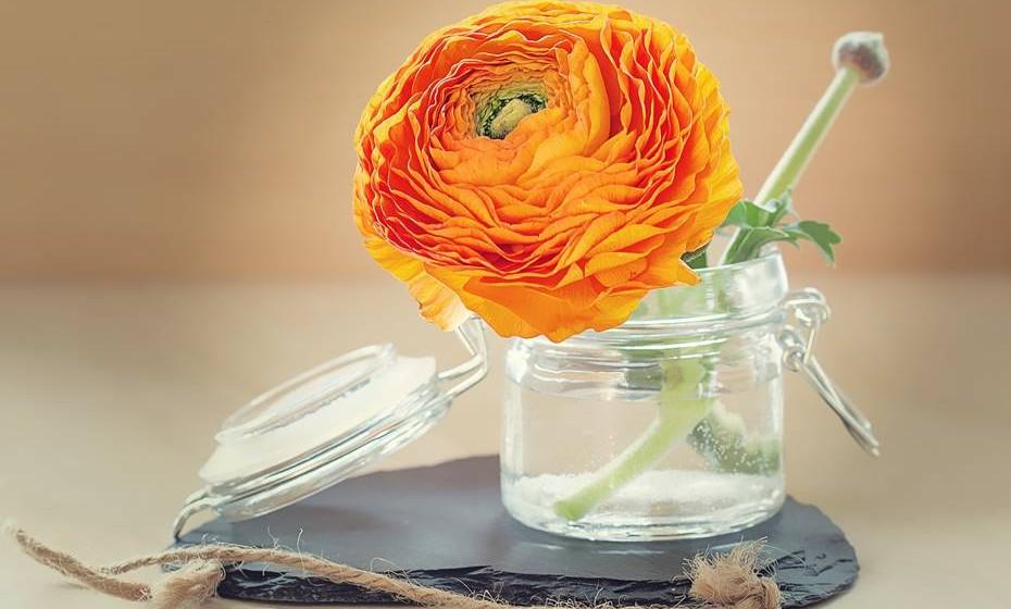 As flores dão sempre um toque fresco e rejuvenescido à casa. E se for de forma criativa, melhor ainda. Não sabe como fazê-lo? Damos-lhe algumas ideias para tirar o melhor partido destas embaixadoras da primavera.