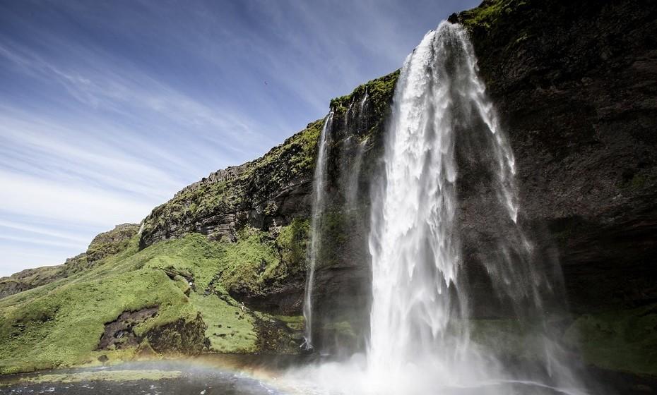 A Islândia não tem mosquitos. Nem um.
