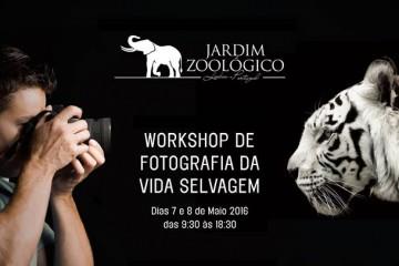 Aprenda a fotografar o mundo selvagem no Jardim Zoológico