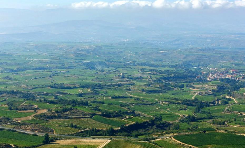 Rioja, Espanha. Os vinhos podem ser degustados nas fazendas tradicionais grandes como Lopez de Heredia ou nas novas vinícolas com fachada de vidro brilhantes como Baigorri. Numa excursão destas, não pode deixar de experimentar as tapas de chouriço picante especial, morcela ou lombo de ar seco.