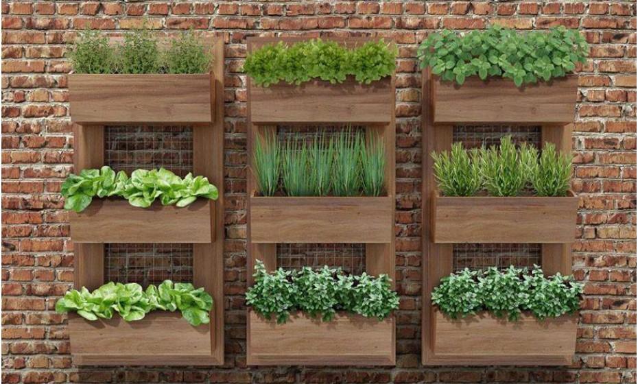 Os jardins verticais são um sistema que rentabiliza espaços reduzidos e estes tanto se adaptam a ambientes interiores como a exteriores. A projeção e instalação de soluções mais complexas deve ser feita por profissionais especializados, mas as mais simples podem ser projetadas por si.