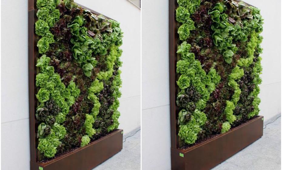 Fixe a estrutura do suporte, normalmente metálica, à parede para que possam ser instalados painéis que funcionam como 'bolsas' recetoras das plantas devido à sua base impermeável. Estes painéis comportam, ainda, um sistema de rega automatizado que promove a sustentabilidade do jardim ao longo do tempo.