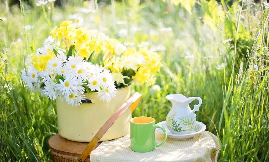 Se considera que estar constantemente a beber água é aborrecido, alterne com chá verde. Vários estudos já comprovaram os seus imensos benefícios como, por exemplo, redução do colesterol, acelerador de metabolismo, entre outros.
