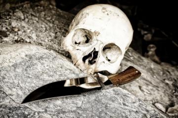 Cientistas encontram fóssil com cancro