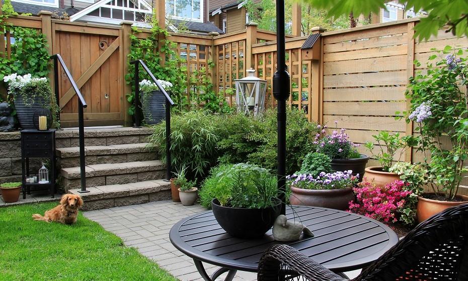 Aposte nos jardins verticais para aumentar o seu espaço verde.