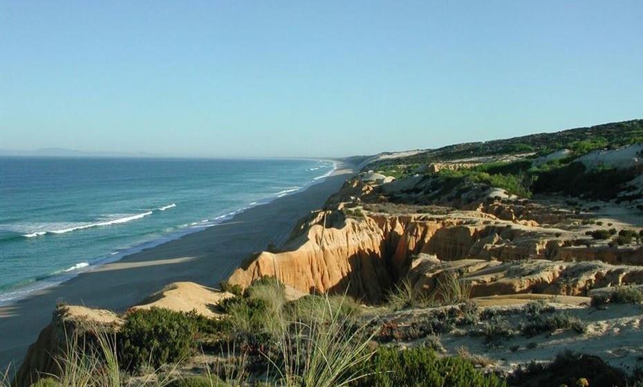 Na praia da Aberta Nova, perto de Melides, tem um areal a perder de vista. Certamente que a natureza no seu estado mais puro lhe permite ir a banhos como veio ao mundo.
