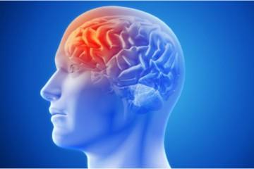 Estilo de vida influencia o aparecimento da doença de Alzheimer