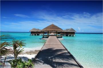 O Dia Mundial do Turismo de 2017, assinalado a 27 de setembro, é dedicado ao turismo sustentável. O objetivo é criar projetos onde turismo e natureza floresçam lado a lado. Veja de seguida alguns hotéis que unem o melhor dos dois mundos.