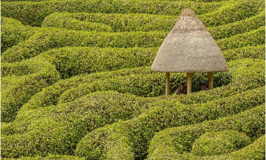 Já alguma vez se imaginou rodeado literalmente por um labirinto? Estes núcleos geométricos podem ser um verdadeiro desafio e despertar momentos de grande aflição, mas também de muita diversão. Conheça alguns dos labirintos mais incríveis do mundo.