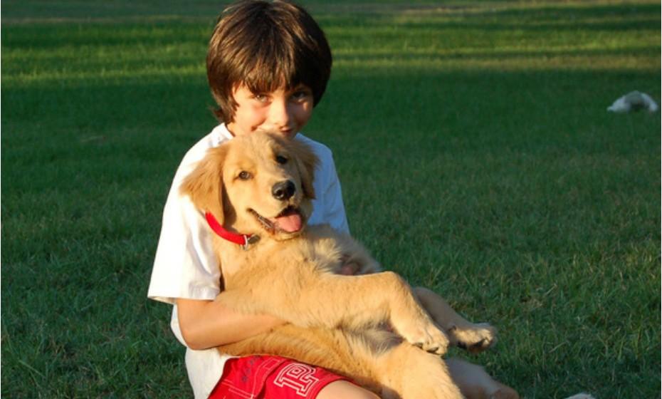 Deixe o cão lambê-los à vontade (desde que haja segurança e confiança entre ambos). É importante levar o cão ao veterinário antes de o bebé nascer ou regularmente para se certificar de que está bem de saúde. Alguns estudos sugerem que o contacto com cães pode diminuir a suscetibilidade de a criança desenvolver alergias e asma. Para além disso, transmite à criança valores de companheirismo, proteção e de amor pelos animais.
