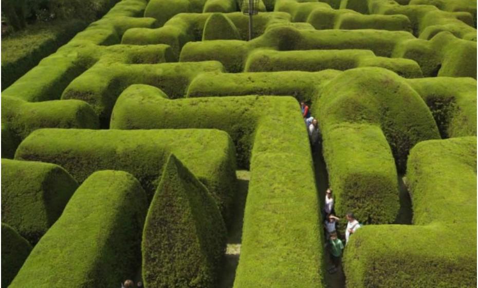 Ashcombe Maze, Austrália – Este é o labirinto mais antigo e mais famoso da Austrália. Foi contruído há mais de 40 anos e precisou de mais de mil ciprestes para estar completo.