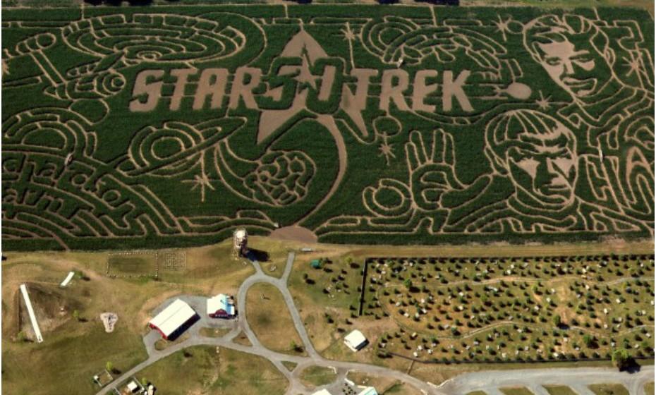 Richardson Corn Maze, EUA – Este é efetivamente o maior labirinto do mundo. Na verdade, Richardson Corn Maze cobre 11 hectares com plantação de milho. Atualmente, o labirinto apresenta um desenho em honra do filme 'Star Trek'. (Fonte: CNN).