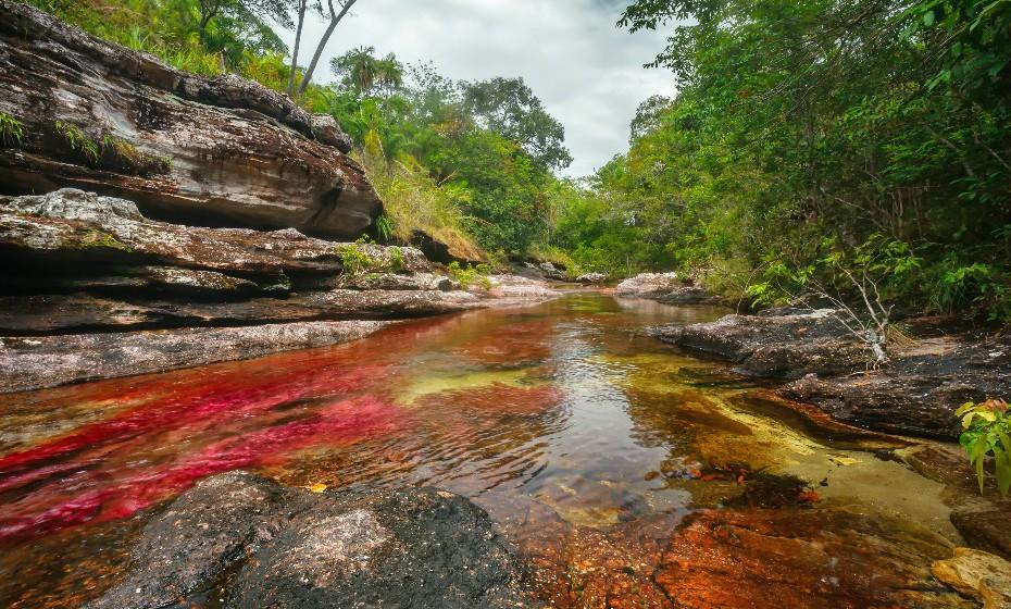 Caño Cristales, Colômbia, é o rio de cinco cores que atravessa o Parque Nacional Macarena no centro do país. Em dias de sol, de julho a novembro, a combinação da planta Macarenia clavigera, a química das rochas e a luz do sol transformam este rio num arco-íris líquido.