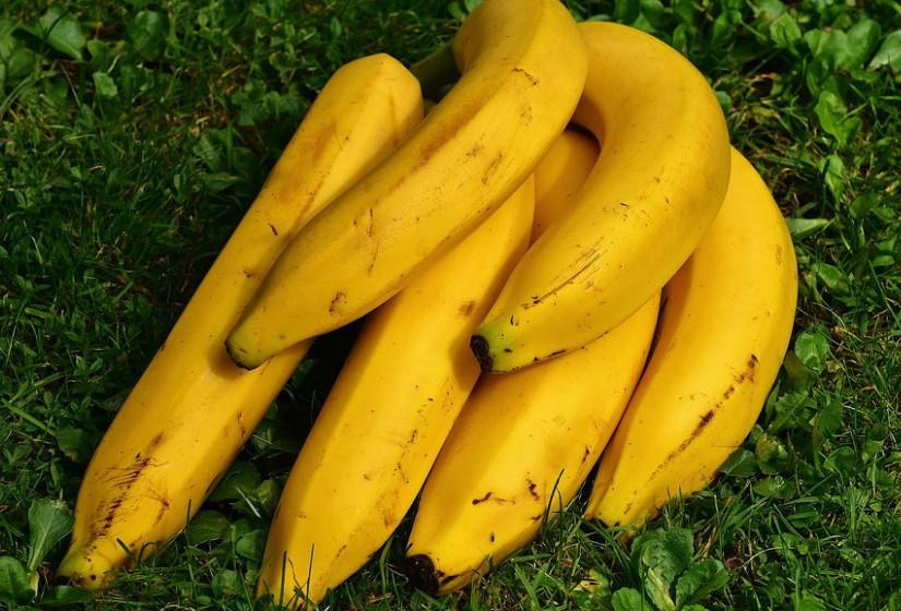 Bananas – Mantêm a harmonia entre os micróbios na comunidade bacteriana conhecida como 'phyla'. Têm a capacidade de reduzir a inflamação devido aos altos níveis de potássio e magnésio.