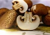 Comelos shiitake são melhoram a imunidade