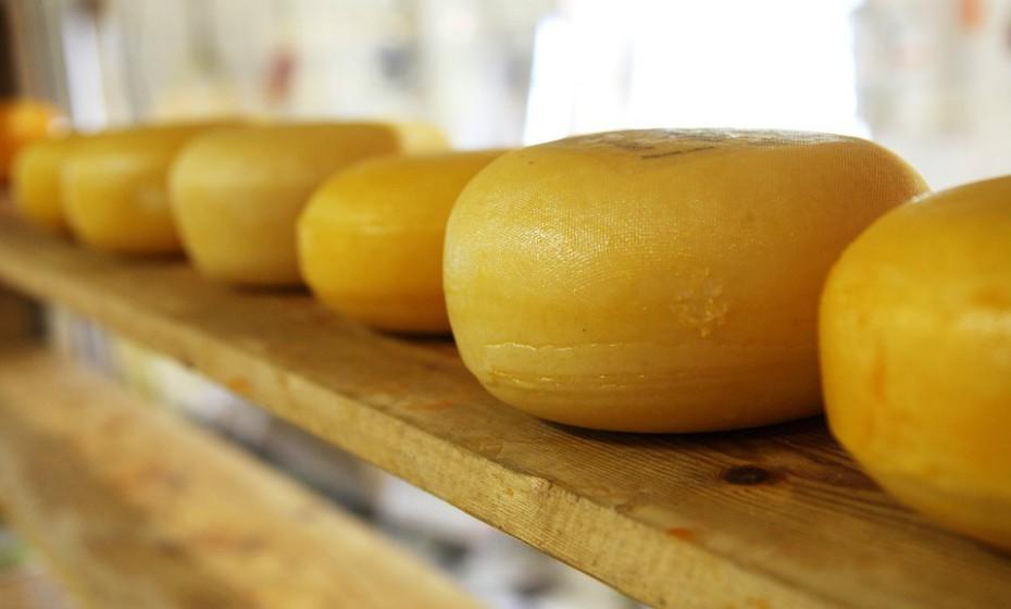 Uma colher de sopa de queijo da serra (200g) tem 78kcal, 6,3g de gordura, 18mg de colesterol, 0,1 de açúcar e 123mg de sal. Para compensar a ingestão destas calorias deve passear o cão durante meia hora. Vai perder 104kcal.