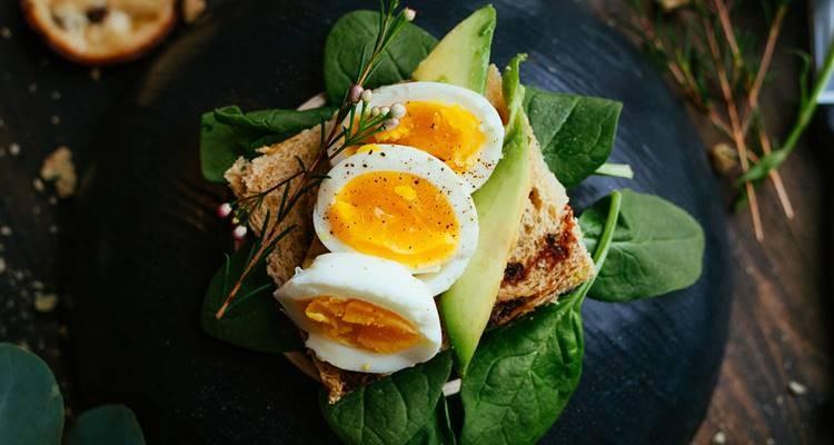 Alimentação e o ovo