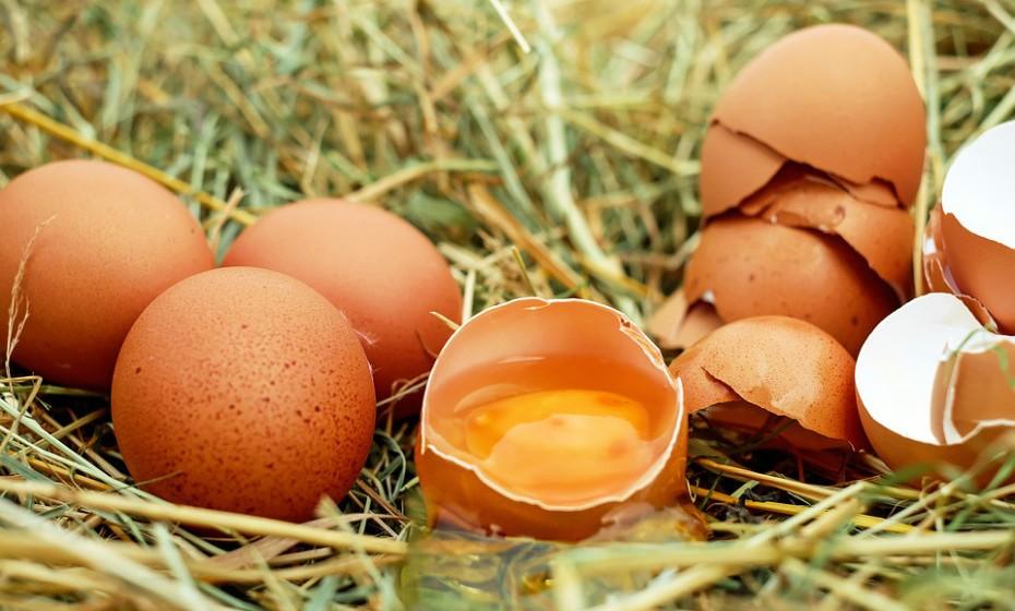 A alergia ao ovo é a segunda causa mais comum de alergia alimentar em crianças. Esta alergia pode suscitar sintomas como, por exemplo, distensão digestiva, como dor de estômago, reações cutâneas ou problemas respiratórios. Curiosamente, é possível ser alérgico à clara de ovo e não às gemas, e vice-versa. Isto porque as proteínas na clara e na gema diferem ligeiramente.