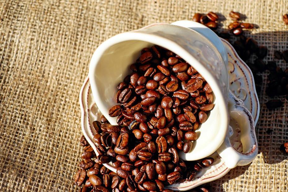 Cerca de 1% da cafeína que consome é transferida para o leite materno. Os bebés demoram mais tempo a metabolizar esta substância. Quantidades moderadas de café e bebidas com cafeína não têm mostrado evidências de danos, mas podem afetar o sono do bebé.