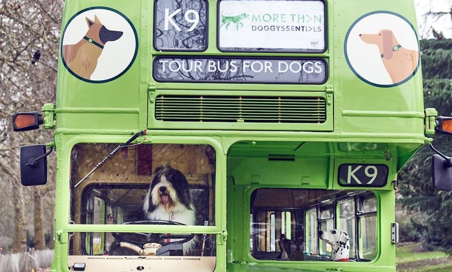 K9 Bus Tour