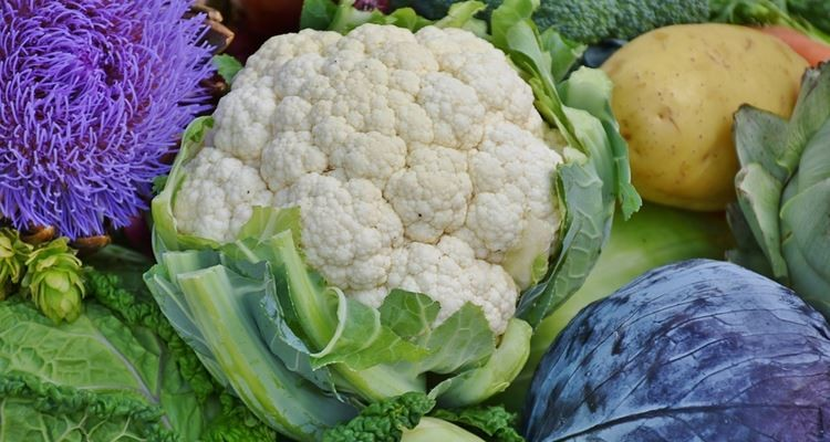 Epigenética: alimente a sua saúde