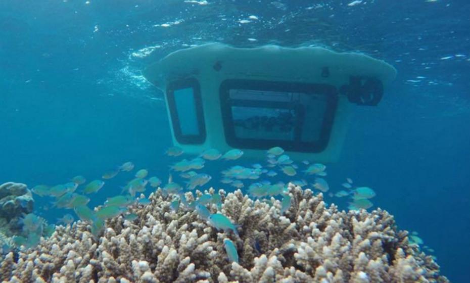 O primeiro semi-submarino compacto do mundo oferece passeios subaquáticos sem equipamento. Além disso, todo o funcionamento do Penguin é amigo do ambiente.