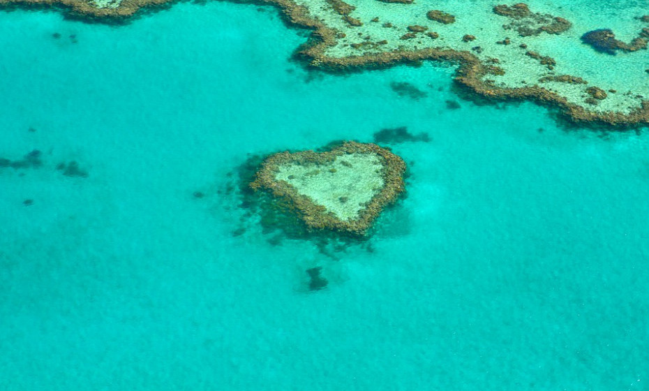 Aquário: Este signo pede uma vigem cheia de aventura! O planeta Urano tem grande influência em Aquário e inclina-o para sítios como a Grande Barreira de Coral, na Austrália. Visitar parques nacionais gigantes também é uma excelente escolha.