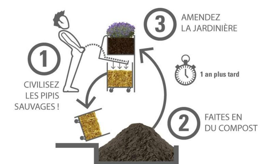 A urina misturada com a serradura nutre a terra do canteiro.