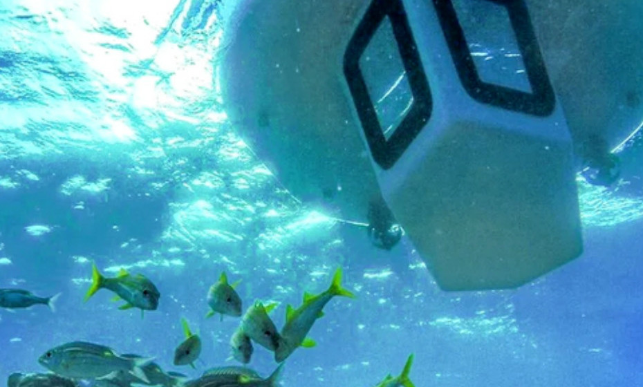 Esta embarcação  não descarrega poluentes nem danifica a natureza. Além disso, utiliza motor elétrico e contribui para o turismo sustentável.