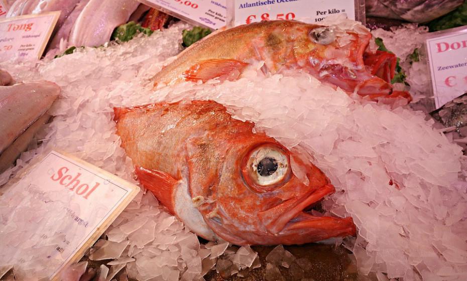 Não guarde o peixe por muito tempo. Se não congelar o seu peixe, mantenha-o no gelo no frigorífico e coma dentro de alguns dias depois de o ter comprado.