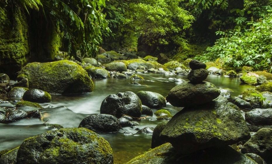 Faça uma caminhada noturna nos Açores. A revista de turismo 'Condé Nast Traveler' elegeu as oito melhores experiências turísticas para se ter à noite, e um passeio nos  Açores é uma delas. Depois de anoitecer, desfrute de um momento entre pai e filho/a a observar as estrelas.