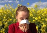 Os espirros, os narizes congestionados e a comichão nos olhos são alguns dos sintomas sazonais mais comuns entre crianças e adultos.E a culpa é do ciclo da natureza. Saiba porquê e conheça ainda algumas dicas da alergologista Maria Garcia-Lloret para atenuar estes sintomas.