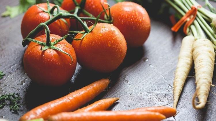 Vamos plantar? As cenouras amam os tomates!